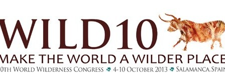 WILD10-Logo-FINAL-Horizontal_web.jpg